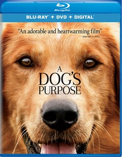 A Dog's Purpose (with DVD) [Blu-ray]