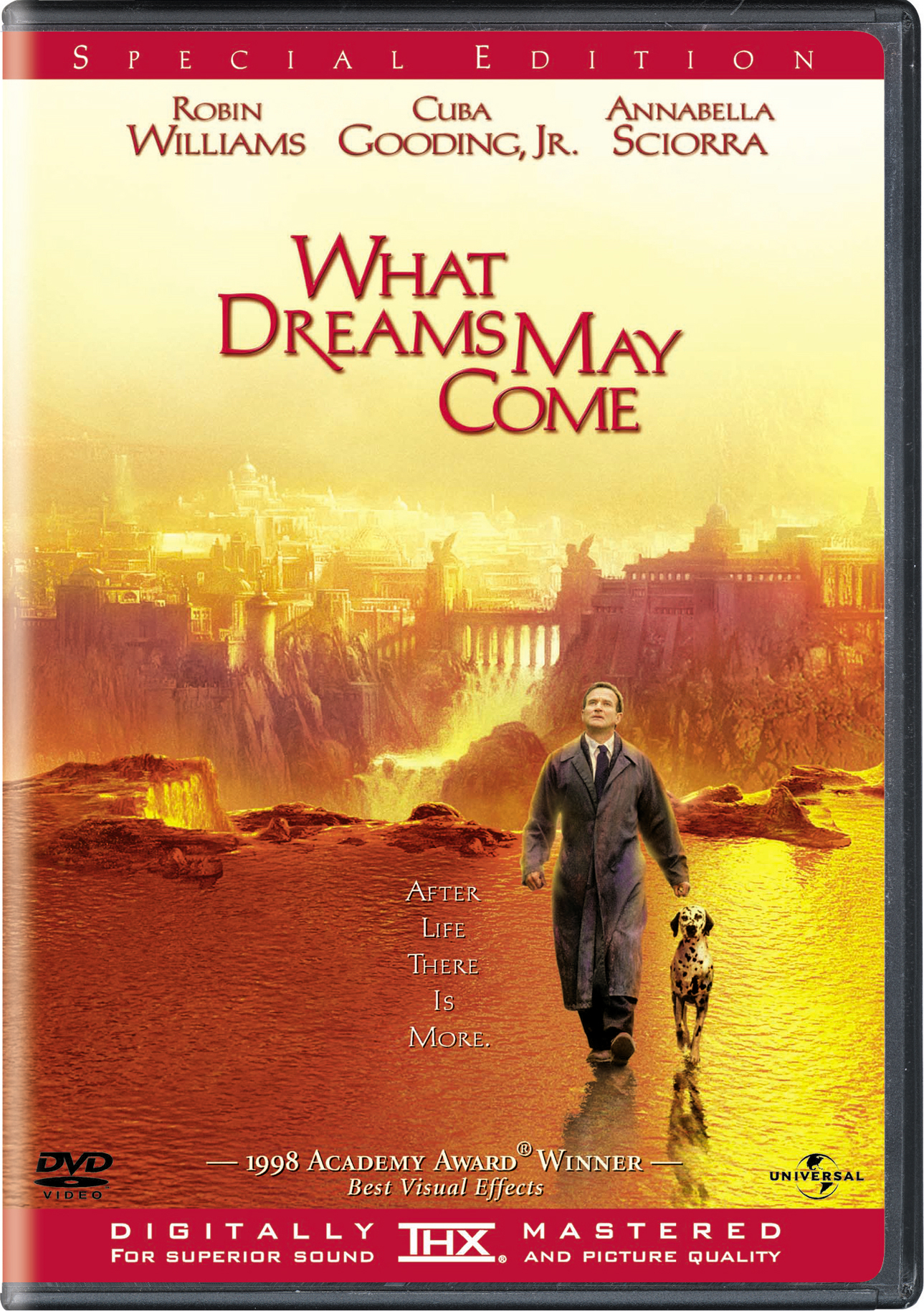 What Dreams May Come (Special Edition) [DVD]